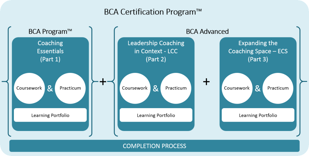 BCA Certification Program Visual - Expanded - Fall 2015