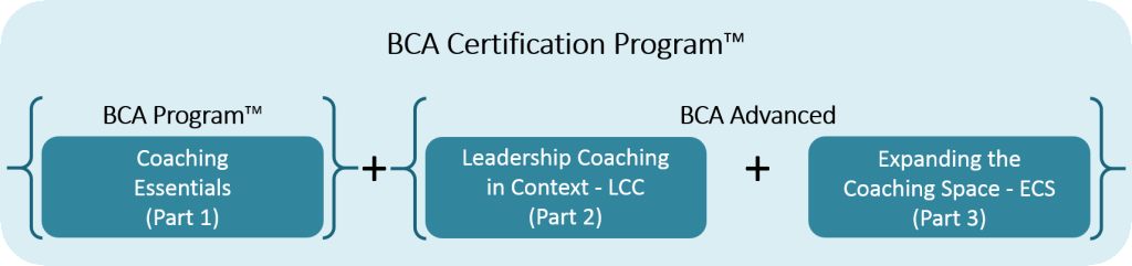 BCA Certification Program Visual Outline