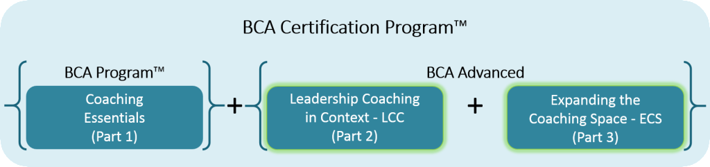 Bca advanced cert program - advanced highlighted